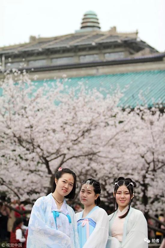 ▲3月16日,武汉大学校园内樱花绽放,吸引众多游客前来观赏。图/视觉中国