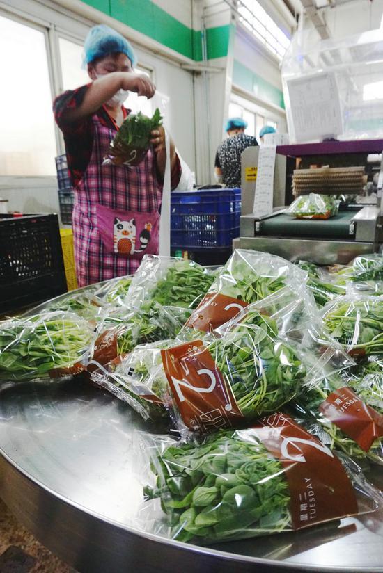 京郊探访:产地直采、冷链直送 24小时运转保供蔬菜图片