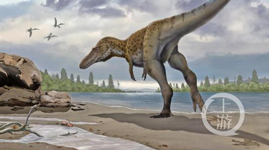 脚印极有可能属于赣州本地发现的虔州龙