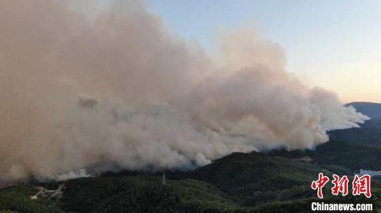 云南安宁发生森林火灾 1160人参与扑火图片