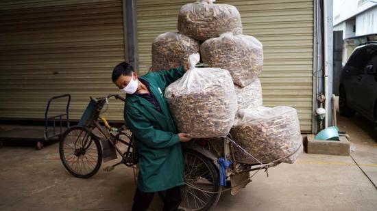 4月27日,云南省昆明市野生菌买卖中央商户渐渐复工。作者:康平