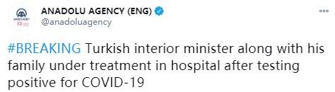 土耳其内政部长及妻女新冠检测呈阳性 已入院治疗