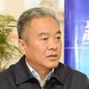 阜南县委书记崔黎