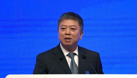 北京市政府原副秘书长林向阳接受审查调查