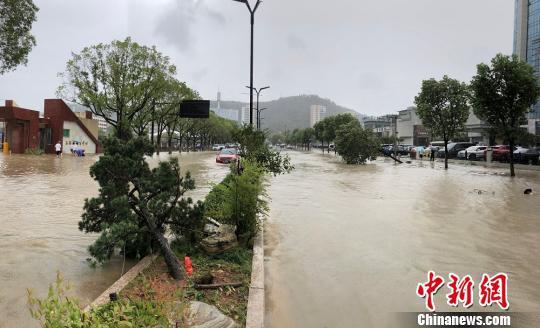台风过境后 浙江台州民众排队给手机充电|玉环|积水|台风
