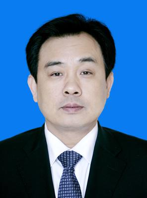 湖北省政府秘书长别必雄被查(图/简历)