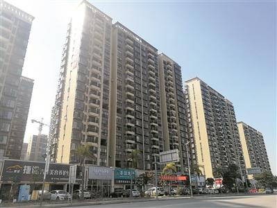 """东莞将打造""""五位一体""""住房体系。广州日报全媒体记者卢政摄"""