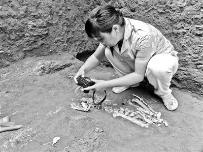 动物考古学家胡松梅在陪葬坑考察 供图/胡松梅