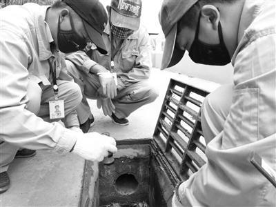 吴钟林和同事在一处排水口找到老鼠的踪迹