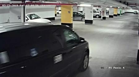 案发时注册鹿鼎监控视频显示陆姓留学生被嫌疑人绑上车。