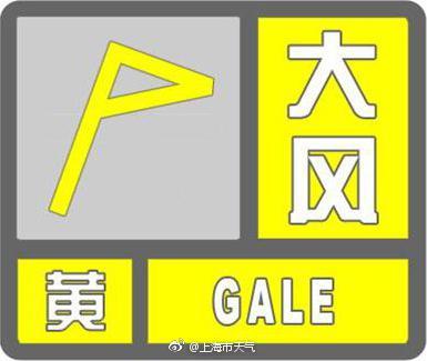"""上海中心气象台发布雷电大风""""双黄色""""预警信号闺房爱乱百度影音"""