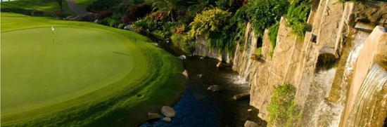 海湖庄园内的高尔夫球场。/海湖庄园网站