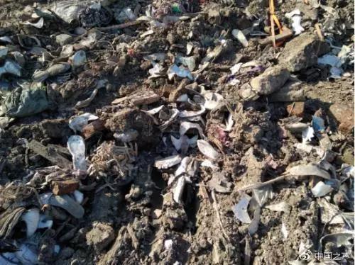 ▲挖机挖到了地下三四米的深处,依然可见大量垃圾。有轮胎、鞋料、塑料、酒瓶等等。图/中国之声