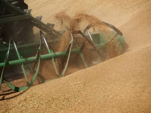 关于购买农产品 中俄又有新动作