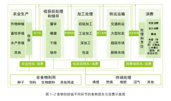 食品供应链不同环节食物浪费示意图(图源:《2018中国城市餐饮食物浪费报告》)