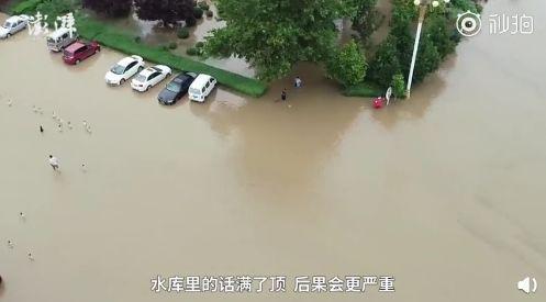图片来源:澎湃新闻视频截图