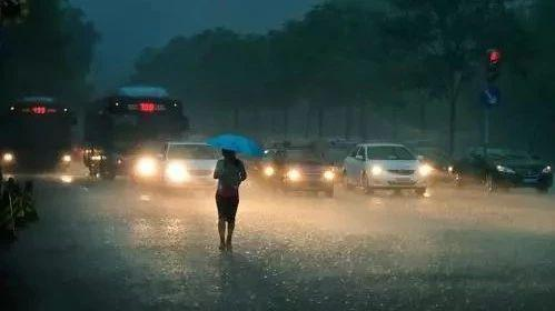 那些在暴雨中奔忙的人最值得敬重