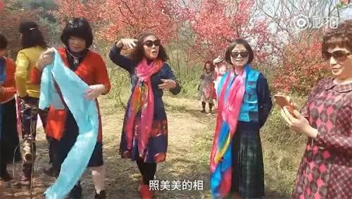 """""""阿姨们照相带7条丝巾""""上热搜"""
