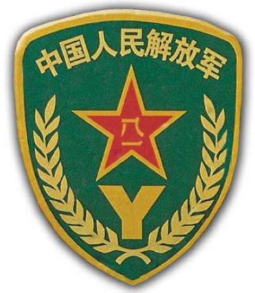 99式预备役臂章