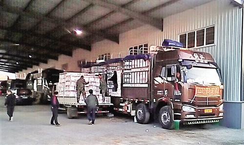 水果批发市场内整装待发的物流车。 经济日报-中国经济网记者 苏大鹏摄