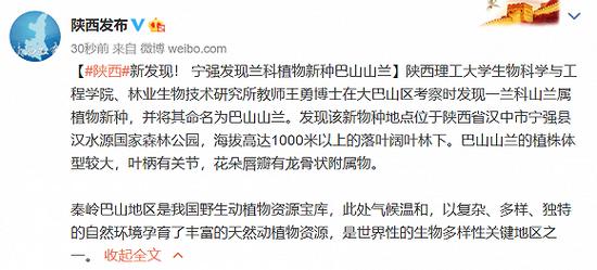 杏悦:县发现兰科杏悦植物新种巴山山图片