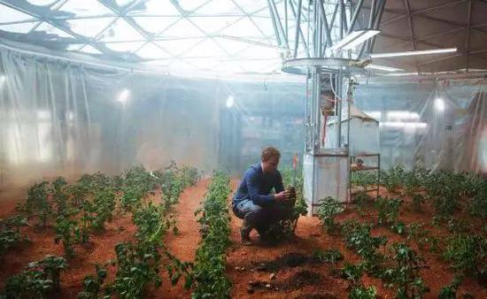 (图:电影《火星救援》剧照,在火星上种土豆是未来人类的愿景之一。)