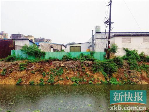 位于惠州小金口的泰亿塑料厂,就建在河涌旁,与居民区一河之隔,常遭居民投诉。