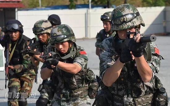 双方官兵进行混编反恐战术训练。