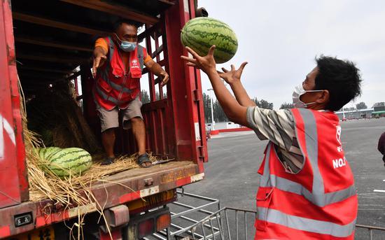 复市首日,在新发地从事西瓜交易多年的老商户从宁夏赶来。摄影/新京报记者 吴宁
