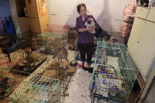 每月房租水电、伙食费,加上工人工资,陈泽华每月要开销近3万元