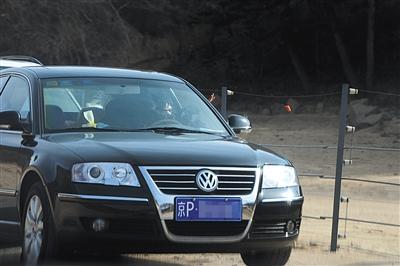 昨日,北京八达岭野生动物世界黑熊区,一名私家车司机打开车窗向黑熊投喂食物。新京报记者 吴江 摄