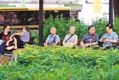 ▲香港街心公園的老人。