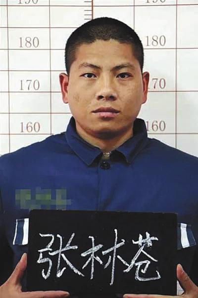 张林苍因犯脱逃罪,加上其此前曾因犯运输毒品罪,数罪并罚,决定执行无期徒刑。