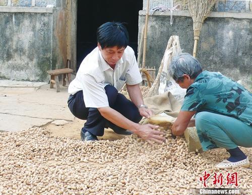 资料图:沈浩与小岗村村民在一起。 供图