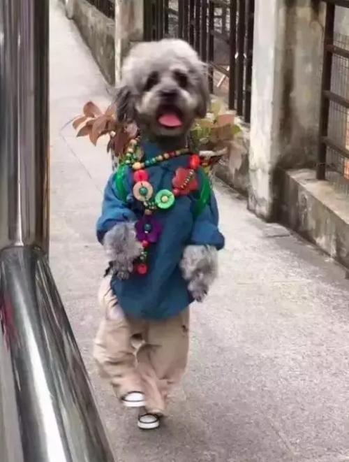 广东快乐十分官网 56