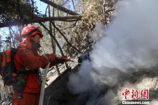 森警官兵正在全力扑灭森火。 杨俊辉 摄