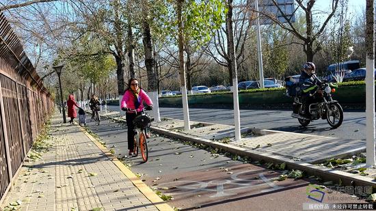11月30日,在北京安定门西大街骑行的市民(图片来源:tuku.qianlong.com)。佟丽萍摄 千龙网发