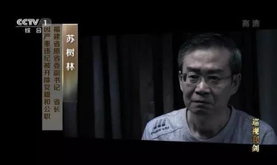 苏树林在中纪委专题片中。