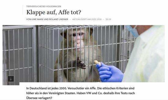 (《法兰克福汇报》:开始了,猴子死了?)