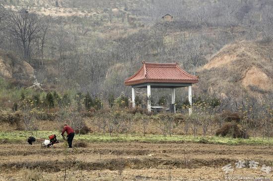 图为潘家祖坟,2014年迁入此地。摄于2017年12月2日 图片来自天水在线
