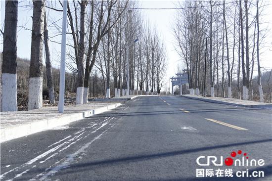 大连金普新区炮台街道袁屯村的农村公路