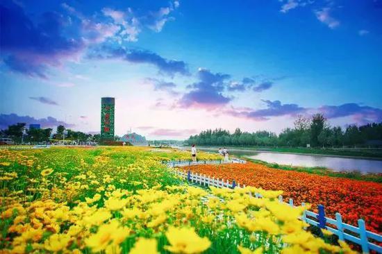 十里花廊与鲜花为伴