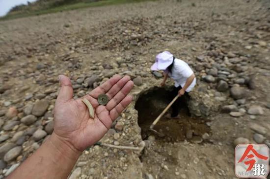 """3月3日下午,象州运江古镇河滩上,一女子挖出""""宝贝""""。"""