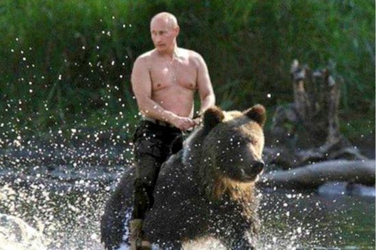 """普京""""骑熊""""照片在网上疯传。(图片来源:俄罗斯卫星通讯社)"""