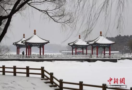 """今年2月,吉林迎""""史上第二""""规模降雪。泉源:中新网"""
