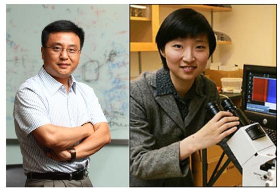 中国21岁博士在《自然》连发2篇论文 教授赞:怪物