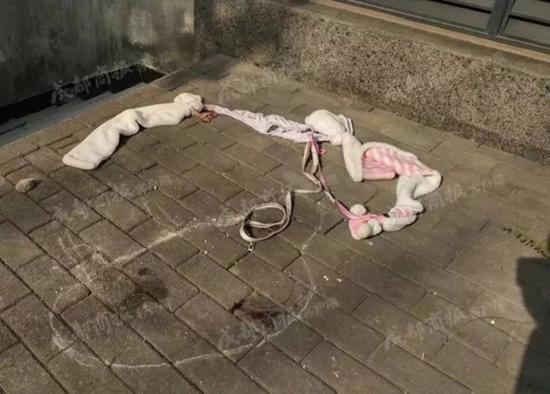 在狗摔下来的地方还有沾着鲜血的绳子。 成都商报 资料图