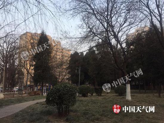 11日晨,北京海淀天气晴朗。