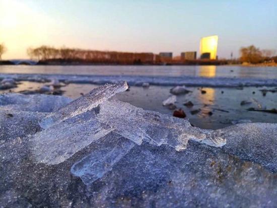 22日,北京大兴念坛公园的冰面逐渐融化。(郑睿 摄)