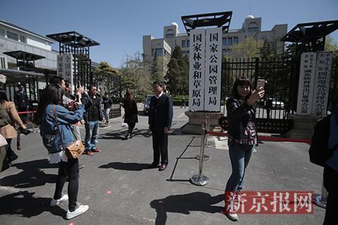 人们在揭幕后的国家林业和草原局、国家公园管理局门牌前留影。新京报记者 朱骏 摄